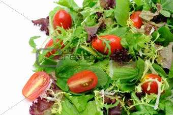 Green salad and tomatoes