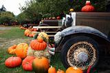 Keremeos Pumpkins