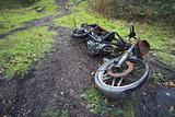 Bike Carcass