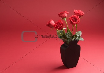 Five roses in the vase on the red background