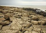 Rocky beach at Northumberland