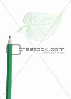Green Pencil, The Leaf