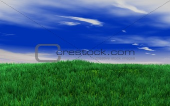 green fields on the blue sky
