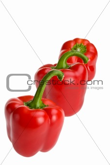 three red bell pepper s in a row isolated on white