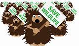 Hedgehogs save wildlife