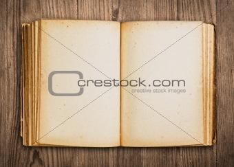 Blank vintage book.