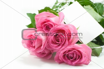 five pink roses with blank card