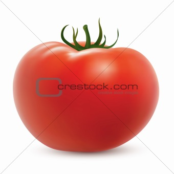 Big ripe tomato isolated on white