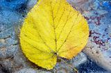 Autumn at the sea