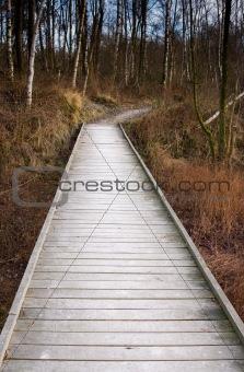 wooden forest bridge
