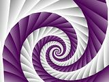 Purple and White Spiral