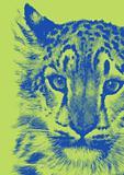 Cat/Tiger Digital Art