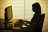 silhouette of woman working computer (blind)
