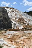 Geyser at Mammoth Hot Springs.