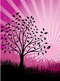 Sunset and tree,  vector