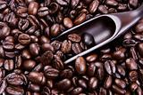 Scoop Of Coffee Bean