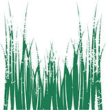 Vector grass
