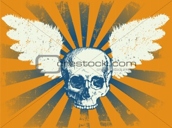 Skull and Wings Grunge Background