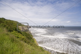 Green headland in summer seascape
