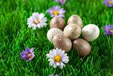 Small easter eggs in a meadow