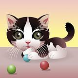 Baby Animal collection: Kitten