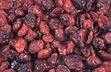 dried fruit - cranberry - background