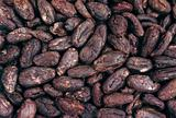 Cocoa beans - background