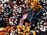 Christmas decoration - dried berry and cones