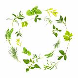 Herb Leaf Garlands