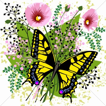 Butterfly and spring flowers