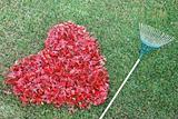 Gardner's Love