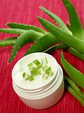 Bowl of creme aloe vera and aloe