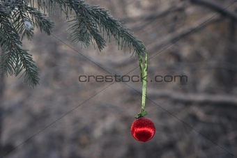 Christmas ball in a winter forest