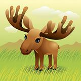 Baby Animal collection: Moose