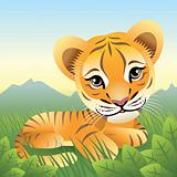 Baby Animal collection: Tiger