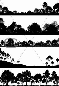 Woodland foregrounds