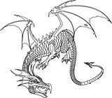 Dragon bw
