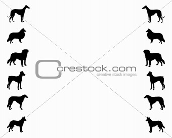 Background with dogs