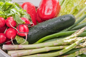 Arrangement of Various Vegetables with Water Drops.
