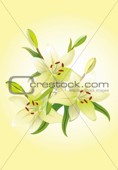 Three lily, vector grunge floral background
