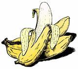 Vintage 1950s Bananas