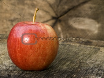Apple on Stump