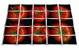 tomato puzzle collage