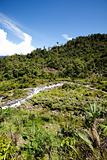 Tropical Mountain Landscape