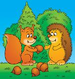Squirrel and hedgehog