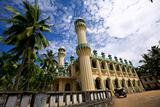 Muslim mosque in palms