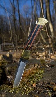 foldinig hunting knife