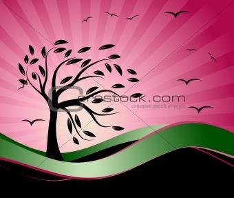 Old tree silhouette, season background