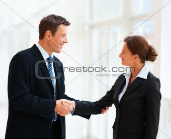Happy business people shaking hand with each other