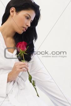 Latin Rose